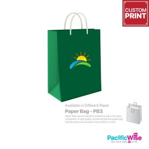 Customized Printing Paper Bag (PB3)